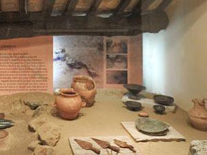 Tante proposte per esplorare i musei