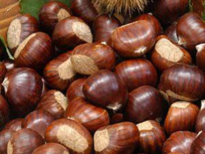 Festa del marrone e prodotti tipici