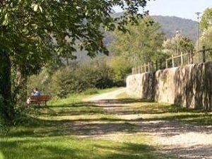 Pontassieve summer village