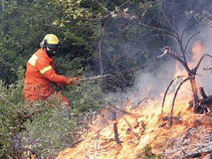Incendio a dicomano: area resta presidiata