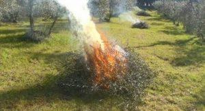 Rischio incendi - divieto assoluto ai fuochi