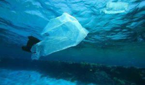 Regione finanzierà navi raccogli rifiuti