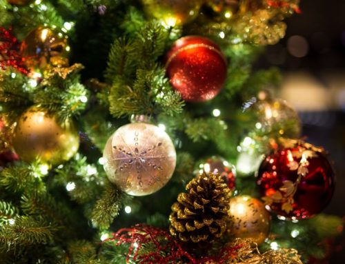 Natale 2019: il ricco programma di 'Natale in Corso 9'
