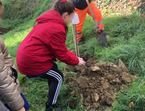 Borgo San Lorenzo: piantati nelle scuole 18 alberi