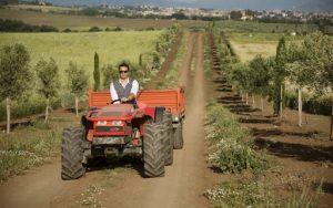 bando aziende agricole