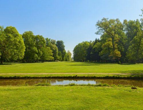 Borgo San Lorenzo: spazi verdi per le associazioni. Il bando