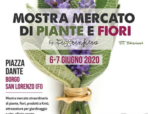 A Borgo San Lorenzo la Mostra Mercato di fiori e piante