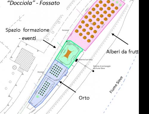 """I giardini della """"Docciola"""" a nuova vita: agricoltura urbana, svago e sostenibilità"""