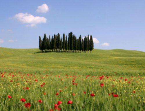 Toscana: Ristori per il turismo, al via il bando rivolto alle strutture ricettive