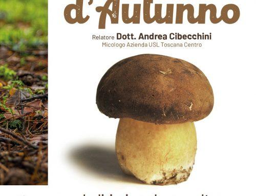 Borgo San Lorenzo. Funghi d'autunno, appuntamento per imparare a riconoscerli